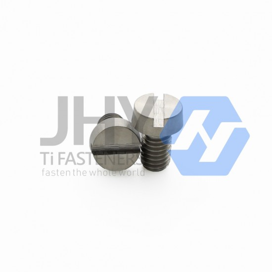 Titanium Slotted Head Cap Screws