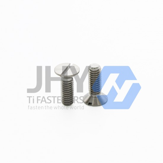 Titanium Slotted Countersunk Head Screws